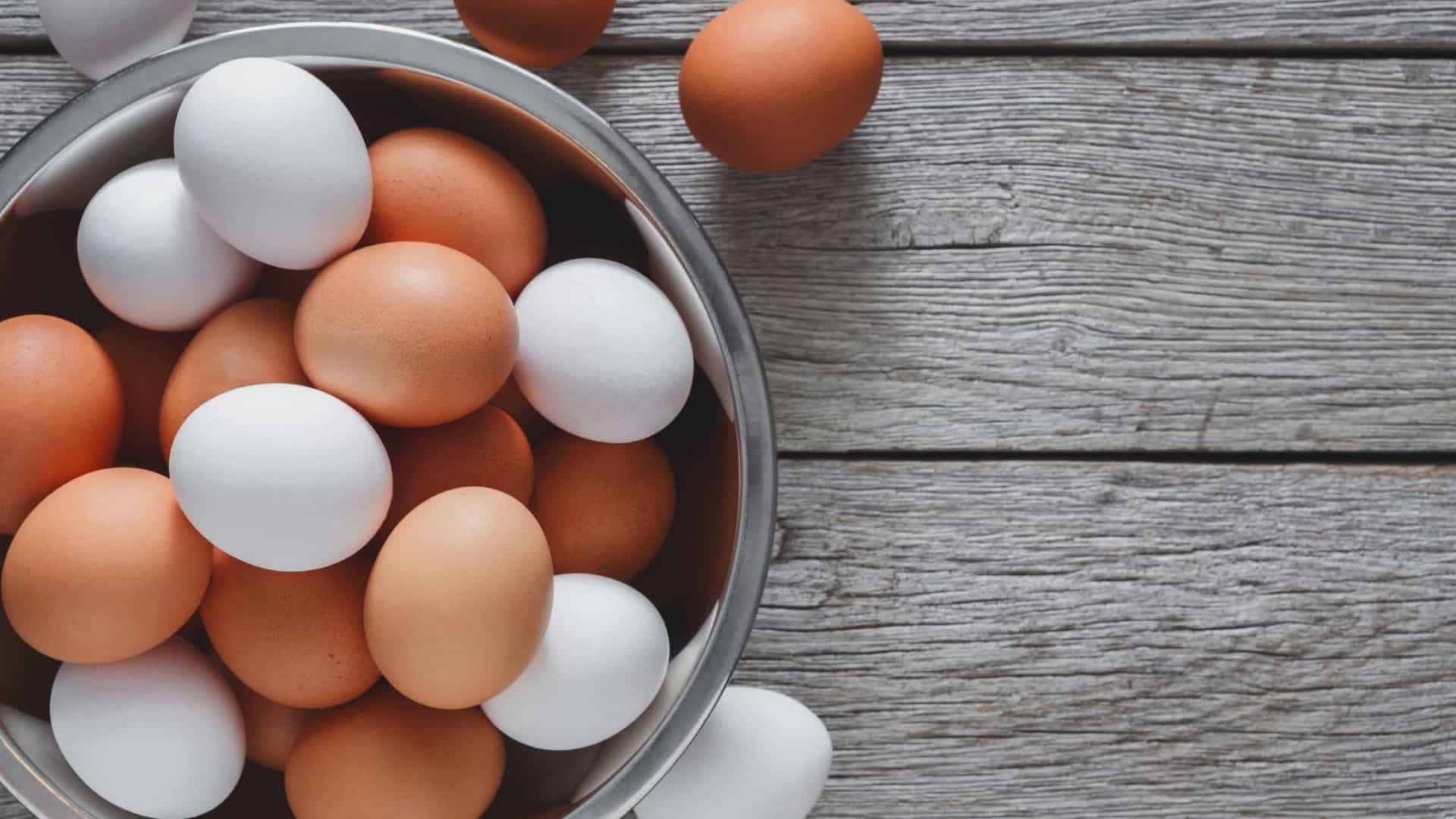 Conheça 5 receitas proteicas com ovo para ganhar massa muscular